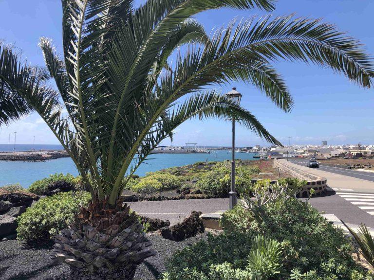 Blick auf den Hafen von Arrecife