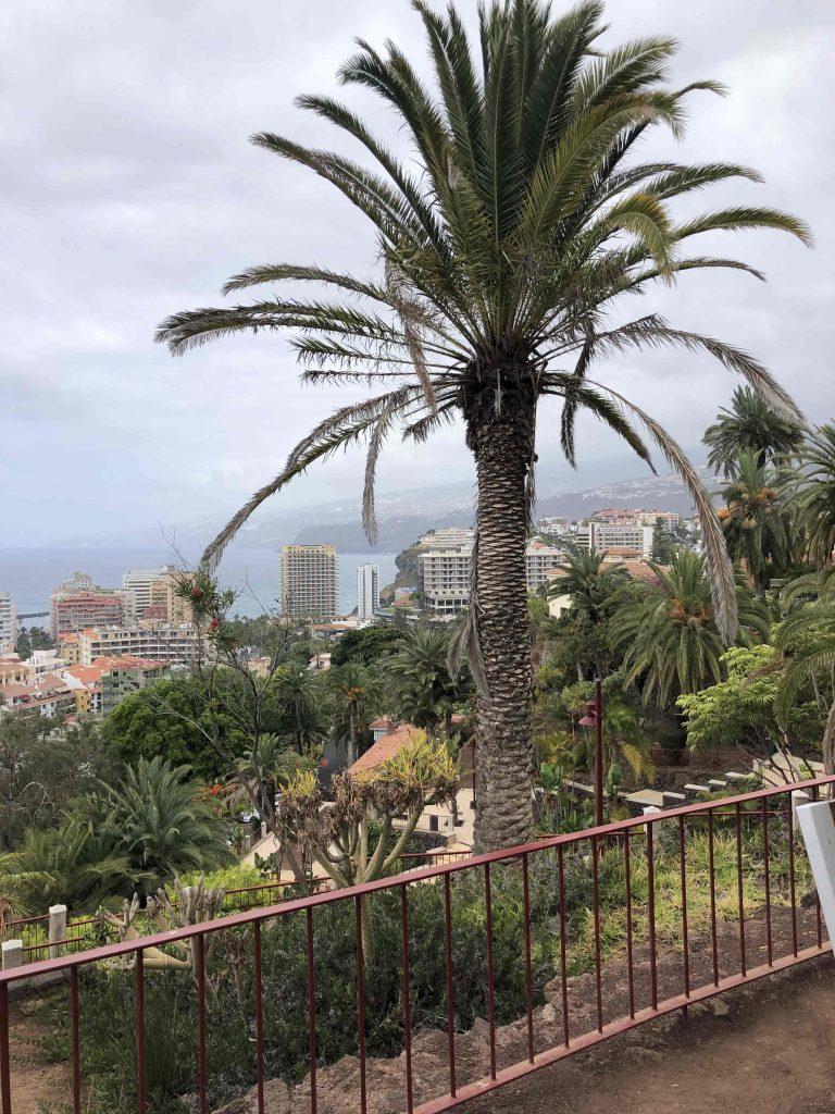 Ein Blick von oben auf die Stadt