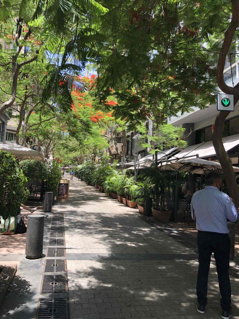 Viel Grün und reichlich Blumen in der Stadt